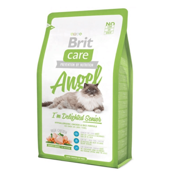 BRIT CARE ANGEL DELIGHTED SENIOR 2kg